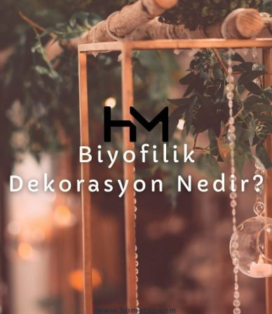 biyofilik dekorasyon nedir